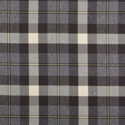 Bill Beaumont Fraser Charcoal Fabric