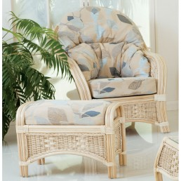 Daro Worcester Cane Chair in Light Natural Wash