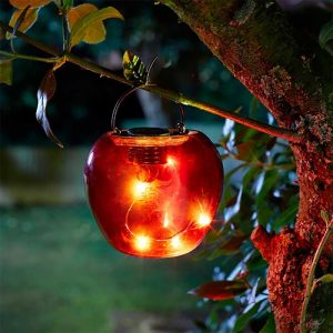 Smart Garden Solar Apple Red