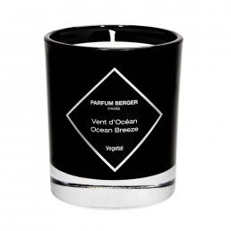 Maison Berger Graphic Collection Candle Ocean Breeze