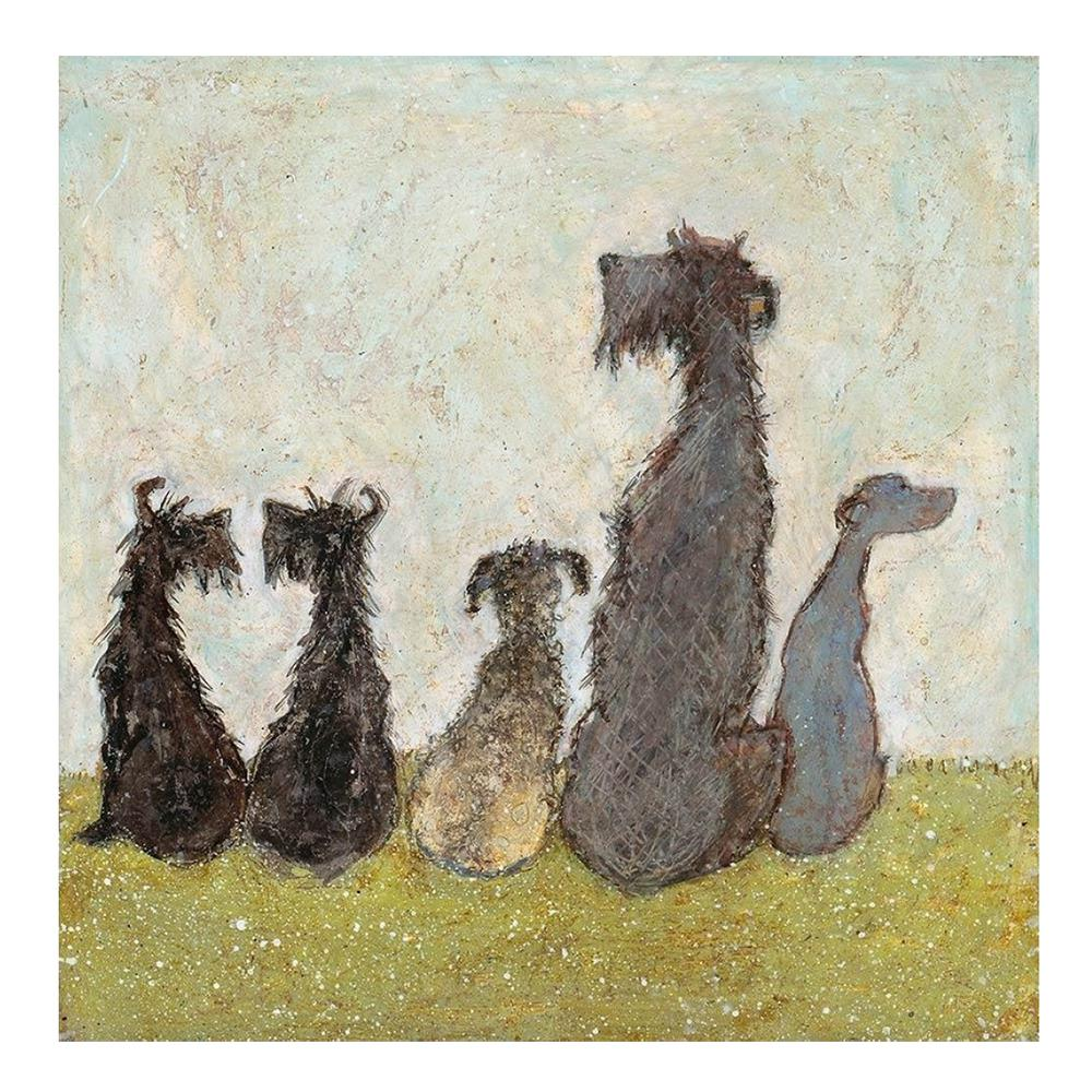 Sam Toft – Watching Cats Go By