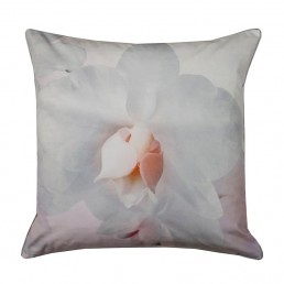 Ted Baker Cotton Candy Cushion Pink 45x45cm