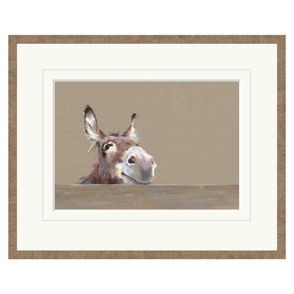Nicky Litchfield - Mr Freckles - Limited Edition Print