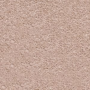 Oaklands Birch Carpet 3.5 x 3.95M