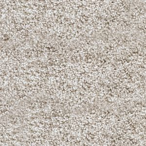 Barra Grey Carpet 2.45 x 3.8M