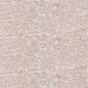 Elements Organza Cream Carpet 3.0 x 4.76M